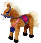 Hobusesõprade hobune Iva