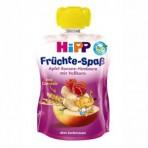 HIPP Puuviljarõõm õunapüree banaani, vaarika ja täisteraviljaga BIO 6x90g