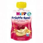 HIPP Puuviljarõõm õunapüree  kirsi, banaani ja täisteraviljadega BIO 6x90g