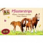 Hobusesõprade plaastrid