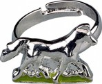 Hobusesõprade sõrmus metallkarbis