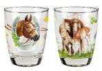 Hobusesõprade klaaside komplekt
