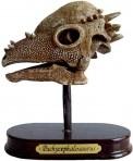 T-Rex World väljakaevamiskomplekt Pachycephalosaurus pealuu