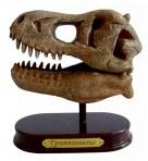 T-Rex World väljakaevamiskomplekt Tyrannosauruse pealuu